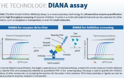 Paul Morrill visited Prague to start collaboration with Diana Technology